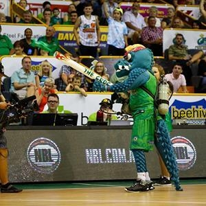 Confiscated: The Townsville Crocodiles mascot fires a T-shirt in to the crowd at a home game.