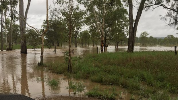 A man has died in floodwaters at Lagoona Station, near Monto.
