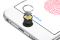The iPhone 6s home button showing its Touch ID hardware.