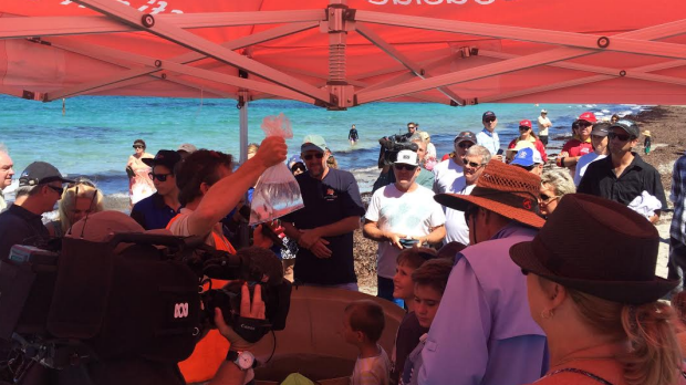 The public rallied to help support the release of baby snapper.