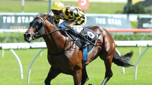 Cashing in: Spill The Beans races to victory in the Eskimo Prince Stakes at Randwick on Saturday. Photo: bradleyphotos