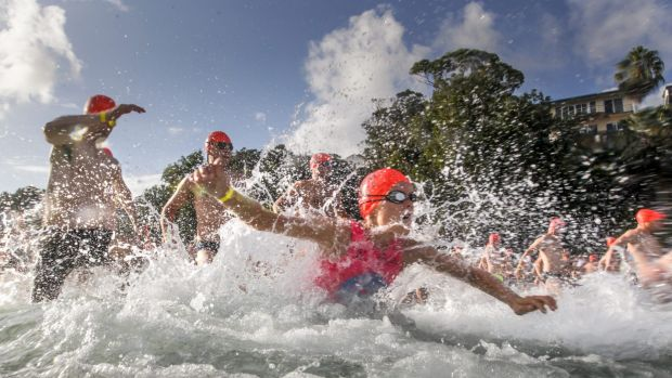 Competitors hit the water during one of the many starts for swimmers in the 2016 Cole Classic at Shelly Beach in Manly.