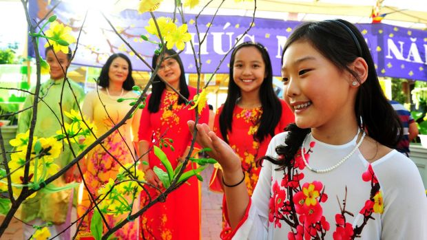 Admiring the Mai flower, which is said to be lucky, at the Sakyamuni Buddhist Centre are, from left, Peter Zhao,13, Hong ...