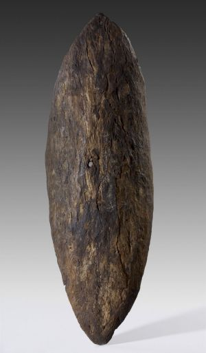 Gweagal shield with bullet hole from an early encounter between Aboriginal people and Captain Cook's men at Botany Bay.