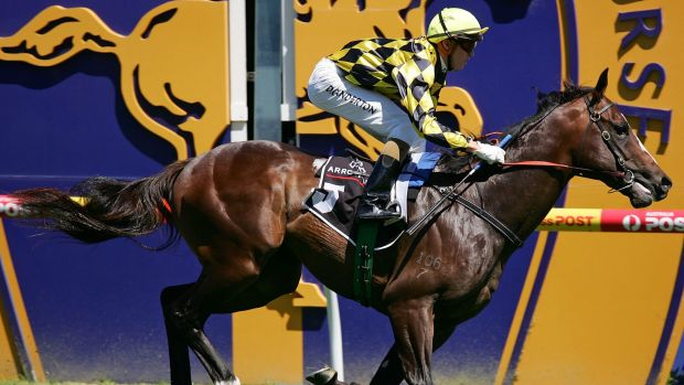Good bloodline: Beneteau wins the Blue Diamond Prelude in 2010.