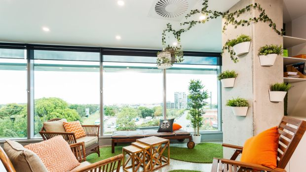 The Domino's DLAB co-working space in Brisbane features a garden-terrace-themed corner.