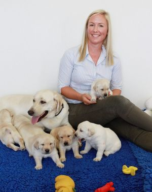 Dr Belinda Dorman sits with guide dog mum 'Gracie' and her seven pups.