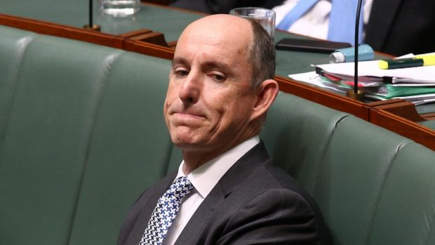 Human Services Minister Stuart Robert during question time on Wednesday.