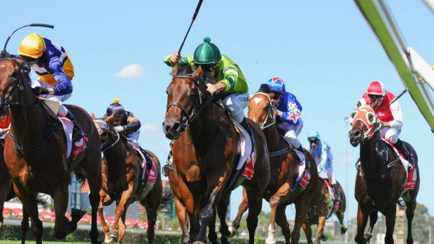 West Australia's racing codes will table a proposal to the state government this week over the potential $1 billion TAB deal.