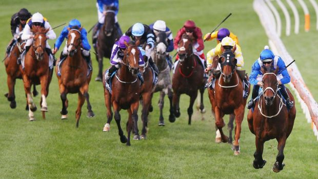 Simply the best: Hugh Bowman and Winx (right) take out the Cox Plate last spring.