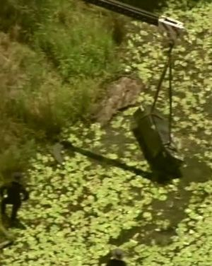 A crane lifts a metal box from a dam at Logan as police search for two bodies.
