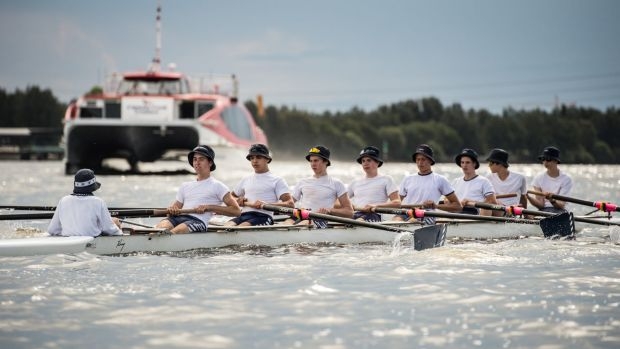 Rowing NSW has launched a campaign to lobby the state government to stop the construction of a wharf at Rhodes.
