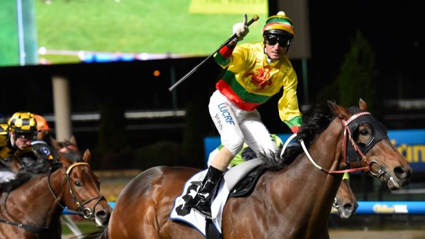Glenn Boss riding Lucky Hussler reacts after winning  the  William Reid Stakes at Moonee Valley last March.