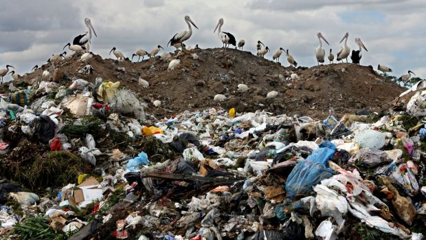 The 'Proximity Principle' is based on the idea that a community that generates waste should also be responsible for its ...