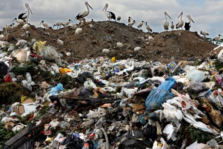 In New South Wales, the government charges companies $138 per tonne to dispose their waste. In Queensland, it costs nothing.