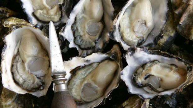 What makes an oyster's heart tick?