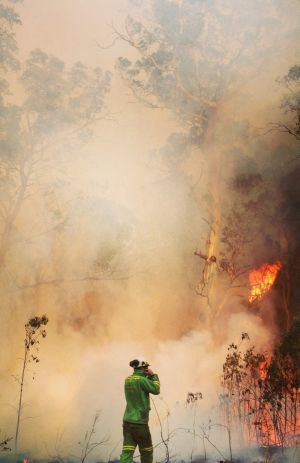 Forest firefighters who braved the Christmas blazes on the Great Ocean Road want recognition as emergency workers.