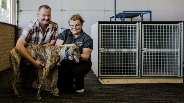 The Canberra Greyhound Racing Club, including secretary Debbie Collier pictured with trainer and breeder Jason Platts ...