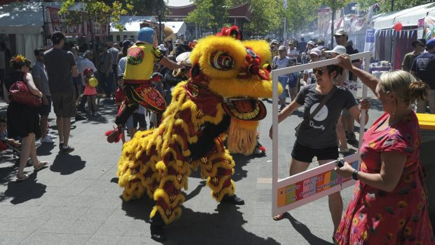 A Chinese lion weaves its way through the crowd at the multicultural festival.