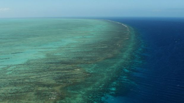 A man has died while snorkelling on the Great Barrier Reef.