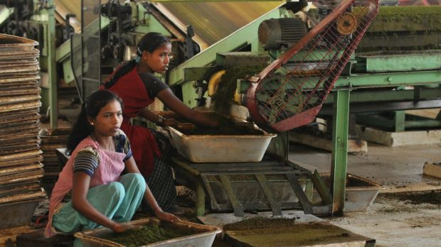 "An NGO called ""Stop The Traffik"" works to prevent human trafficking from Indian tea plantations."