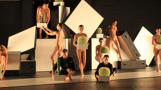 A preview of Cacti by Swedish choreographer Alexander Ekman, coming to Canberra Theatre Centre and Southbank Theatre, ...