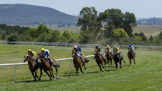 Sir Ottavio looms up on the outside of Our Sarastro on the Queanbeyan bend before going on to victory.