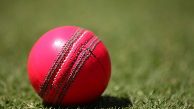 NSW are on the back foot in the day/night Sheffield Shield clash with WA.