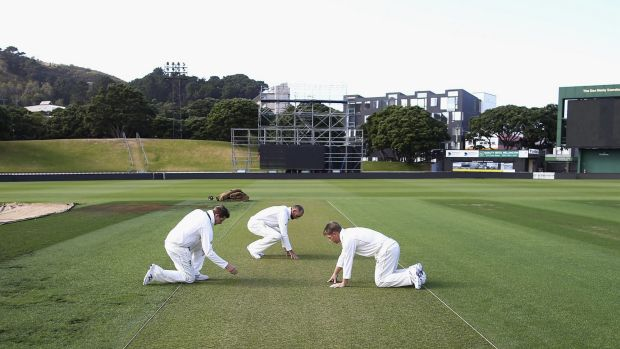 Bowlers on top: Australian skipper Steve Smith, Nathan Lyon and David Warner examine the first Test pitch in Wellington.