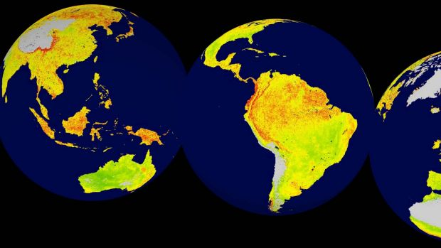 A global snapshot of vegetation sensitivity to climate variability. Areas in green (red) have comparatively lower ...