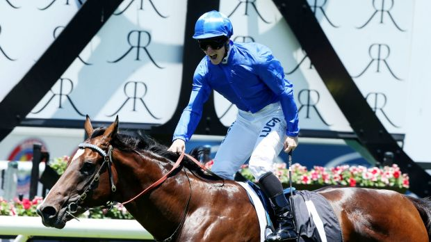 The journey continues: Astern's Golden Slipper hopes will be put to the test at Rosehill on Saturday.