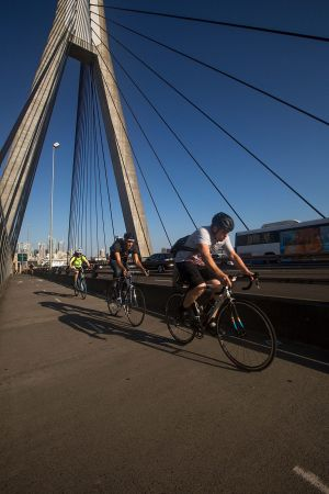 Cyclists leaving the city along Anzac Bridge during evening peak hour.