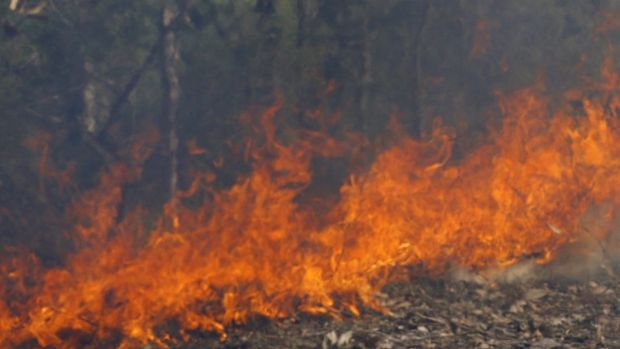 The Carbrook fire broke out on Friday afternoon.