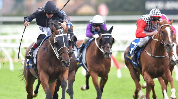 Vlad Duric riding Mourinho to victory on Blue Diamond Day at Caulfield last year