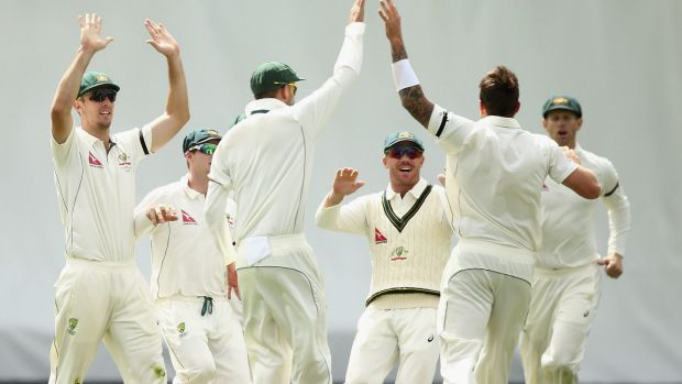 James Pattinson celebrates after taking the wicket of Martin Guptill.