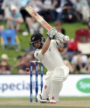 Impeccable credentials: New Zealand's Kane Williamson.