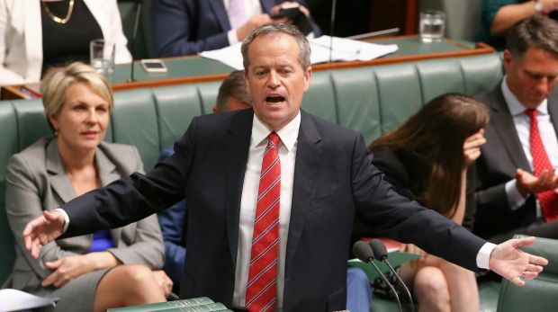Opposition Leader Bill Shorten's plans to scrap the tax deduction on negatively geared properties is popular in Holt.