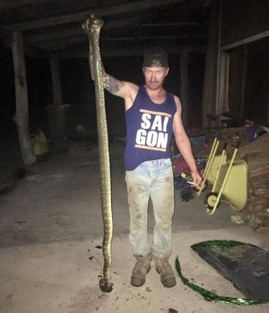Brady holds up the carpet python that reportedly bit the boy on the face.