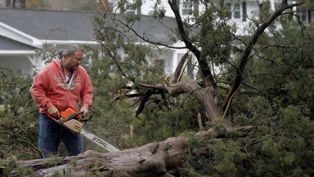 Cedar Lane, Virginia resident HR Whaley works to clear downed cedar trees on Wednesday. Governor Terry McAuliffe has ...