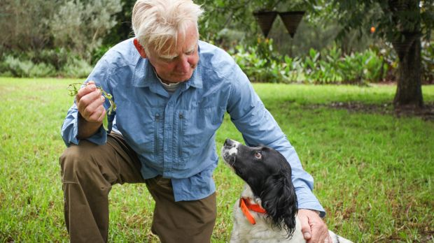Steve Austin's career in training dogs is chronicled in his upcoming memoirs, 'Working Dog Heroes'.