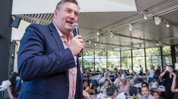 Never a dull moment: Eddie McGuire is proposing a Collingwood-Sydney blockbuster to rival league's State of Origin.