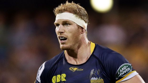 Threat: The Brumbies' David Pocock is a master at the breakdown.