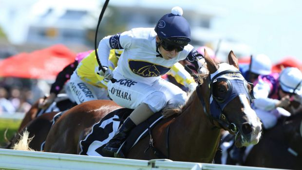 Golden opportunity: Kathy O'Hara rides Scarlet Rain to victory in the Sweet Embrace Stakes at Randwick.
