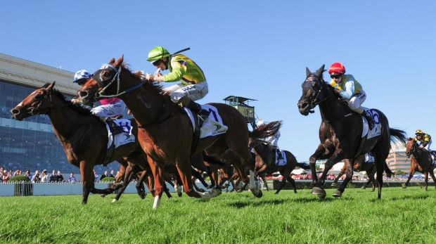 Damian Lane riding Flamberge defeats Glyn Schofield riding Fell Swoop in the Oakleigh Plate.