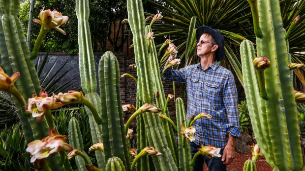 Dr Brett Summerell, director of science and conservation at the Royal Botanic Gardens in Sydney, with a cactus still in ...