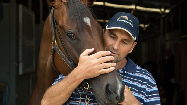Horse trainer Rick Worthington with Honesty Prevails at Warwick Farm stables.