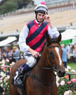 Slipper possibility: Selenia after winning race two at Flemington on Saturday.