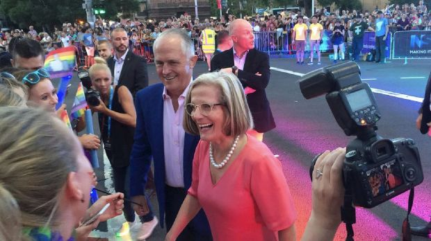A minority in the coalition, including Malcolm Turnbull himself, strongly believe in a right to gay marriage.