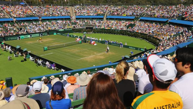View to thrill:  Up in the stands during the match between Bernard Tomic and John Isner at Kooyong Stadium.