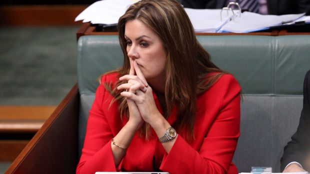 The sexist slavering over Peta Credlin, former chief of staff to Tony Abbott, has left feminists confused.